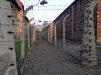 Central Europe Highlights, Auschwitz-Birkenau - Extermination Camp