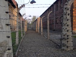 One day in Cracow, 3) Auschwitz-Birkenau tour