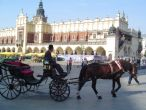 Pilgrimages across Poland, Cracow